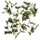 Ivy Garlands Set of 2 by Oakridge OutdoorTM