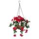 Fully Assembled Mini Poinsettia Hanging Basket by OakridgeTM