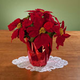 Christmas Poinsettia 12