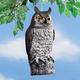 Plastic Owl Decoy