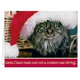 Santa Claws Christmas Card Set of 20