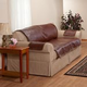 Leather Couch Protector - Sofa
