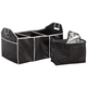Collapsible Trunk Container with Cooler