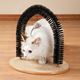 Playtime Cat Arch