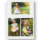 Double Weight 4 x 6 Photo Pocket Pages - Set Of 10 4
