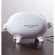 Good Advice Piggy Bank One Size