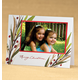 Breezy Branches Insert Cards, One Size