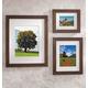Arcadia Conservation Frame 5