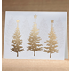 Personalized Golden December Christmas Card Set Of 18, One Size
