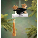 Personalized Graduation Ornament, One Size