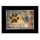Personalized-Rescued Year To Remember Cat 4 Coin Frame, One Size
