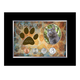 Rescued Year To Remember Cat 4 Coin Frame, One Size