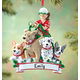 Personalized Dog Walker Ornament Personalized, One Size