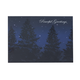 Peaceful Evening Christmas Card Set Of 18, One Size