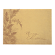 Boughs Of Holly Christmas Card Set Of 18, One Size