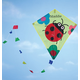 Personalized Children's Ladybug Kite, One Size
