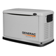Generac 6241 Guardian Series 14 kW Air-Cooled Standby Generator with Steel Enclosure with 200SE (CARB)