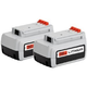 Black & Decker LBXR36-2 36V Lithium-Ion Battery (2-Pack)