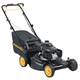 Poulan Pro 961420129 160cc Gas 22 in. 3-in-1 Discharge/Rear/Mulch Lawn Mower