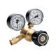 Western Enterprises REB-3-FGD Flow Gauge Regulators, Argon, 0-35 SCFH, CGA 580, 3,000 psig inlet