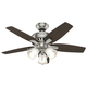 Hunter 51085 42 in. Newsome Brushed Nickel Ceiling Fan with Light