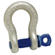Campbell 193-5411635 419 Series 1 in. 8 1/2 Ton Anchor Shackles Bail with Screw Pin Shackle