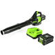 Greenworks 2404602 Pro BL80L2510 80V Axial Blower with 2 Ah Battery and Charger