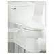 American Standard 2876.100.020 Flowise Elongated Two Piece Toilet (White)