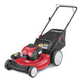 Troy-Bilt 11A-B2BM766 21 in. 3-in-1 Push Mower with Briggs & Stratton 140cc OHV Engine