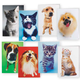 Dog and Cat Blank Note Card Value Pack of 24