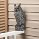 Flush Mount Scare Owl by Pest-B-Gone™