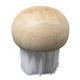 Wooden Mushroom Brush
