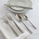 Fortessa Scalini Flatware 5-Piece Place Setting