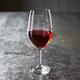 Schott Zwiesel® Forte Full-Bodied Red Wine Glasses