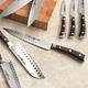 Wüsthof® Ikon Blackwood Hollow-Edge Carving Knife, 8