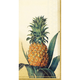 Pineapple Paper Buffet Napkins