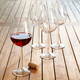 Shatter-Resistant BPA-Free Wine Glasses, Set of 6