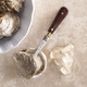 Things Cooks Love™ Oyster Knife