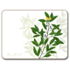 Kitchen Herb Placemats, Set of 4