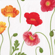 Poppies Paper Cocktail Napkins