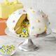 Nordic Ware Surprise Cake Pan