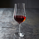 Schott Zwiesel® Concerto Full-Bodied Red Wine Glasses