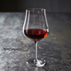 Schott Zwiesel® Concerto Soft-Bodied Red Wine Glasses