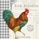 French Rooster Paper Cocktail Napkins