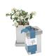 Gardenia Bonsai Kit