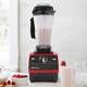 Vitamix Certified Standard Programs Reconditioned Blender