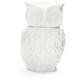 Sur La Table® Owl Cookie Jar