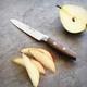 Wüsthof® Epicure Utility Knife, 4½
