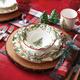 Holly & Pine 16-Piece Dinnerware Set