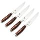 Miyabi® Artisan SG2 4-Piece Steak Knife Set